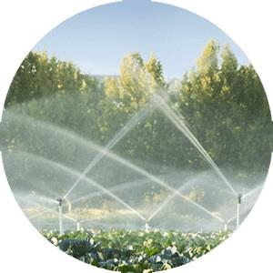 Wasseraufbereitung in der Landwirtschaft