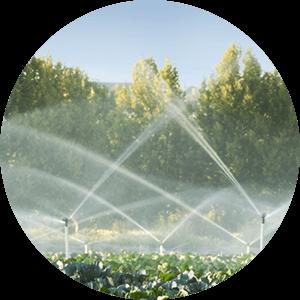 Wasseraufbereitung für die Landwirtschaft